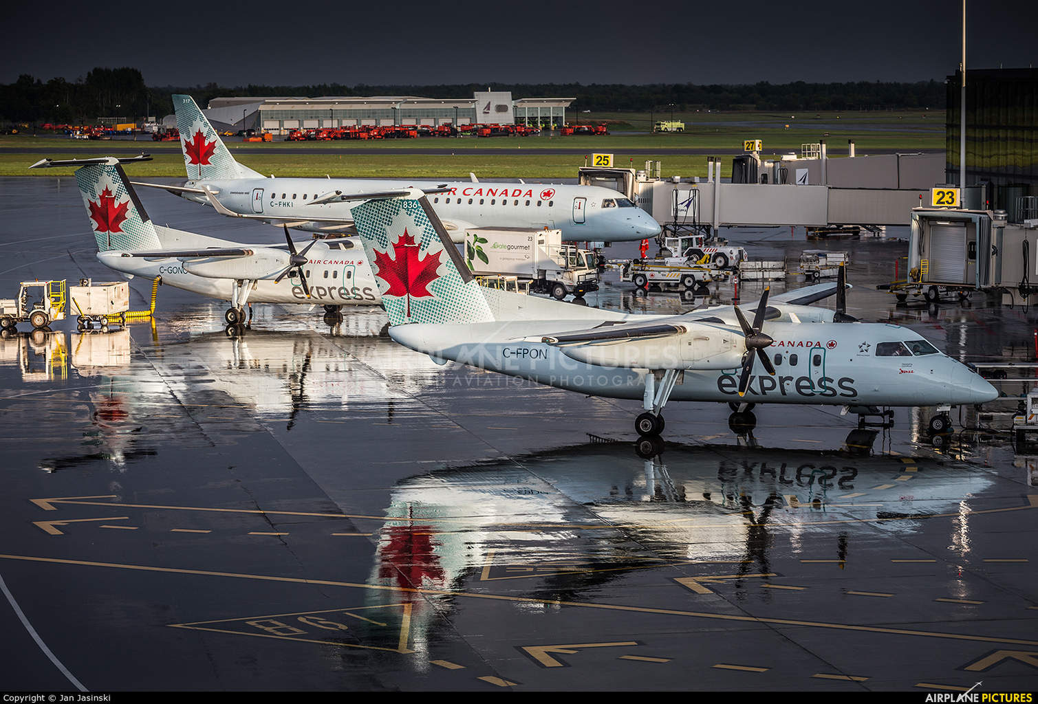 Price of domestic flights at a 6 year low in Canada