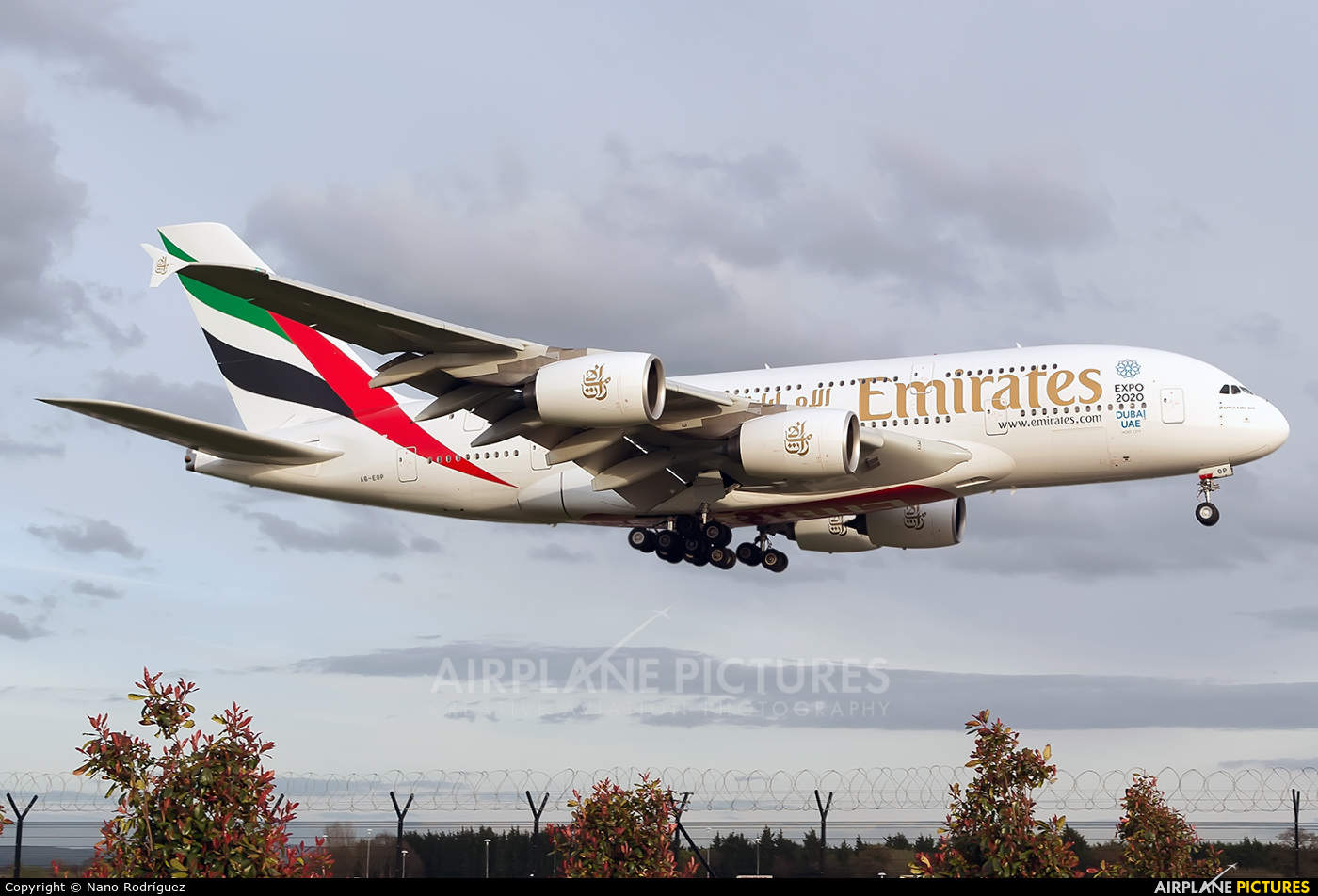 Emirates Group post record profits