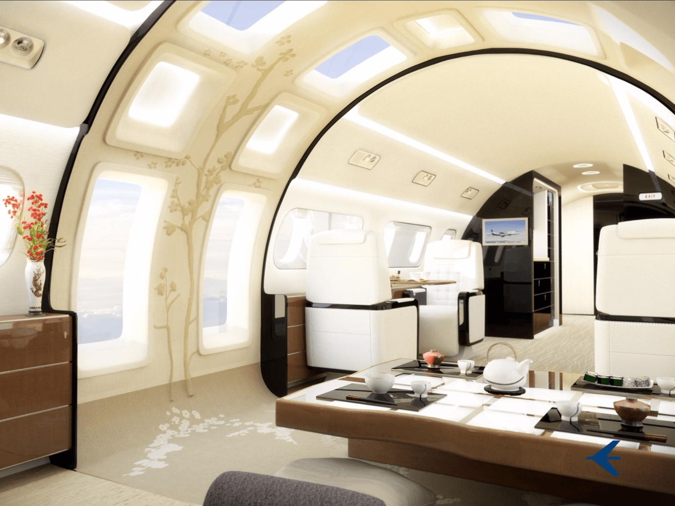 This_beautiful_new_plane_has-76335b0722d8278fc1ccce758abd8e94