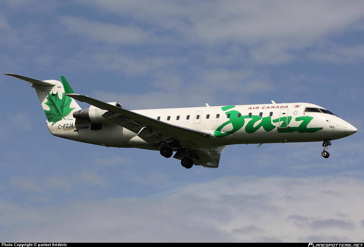 Air Canada Express CRJ-200 hits bird on final into DCA