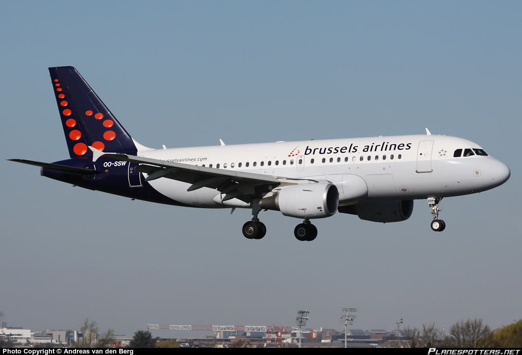 Brussels Airlines Airbus A319 suffers bird strike on final approach at Toulouse