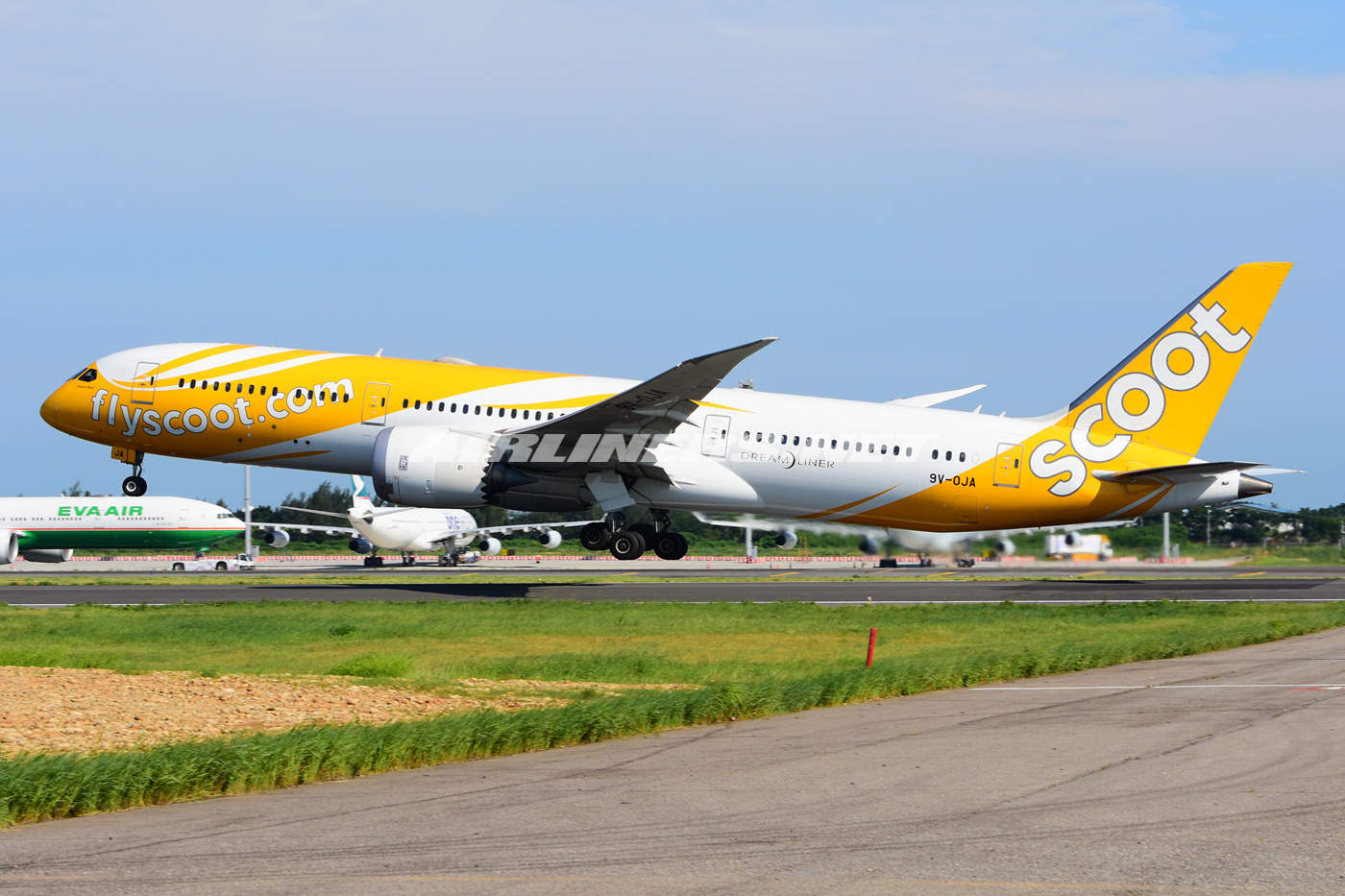 Scoot launches first European route