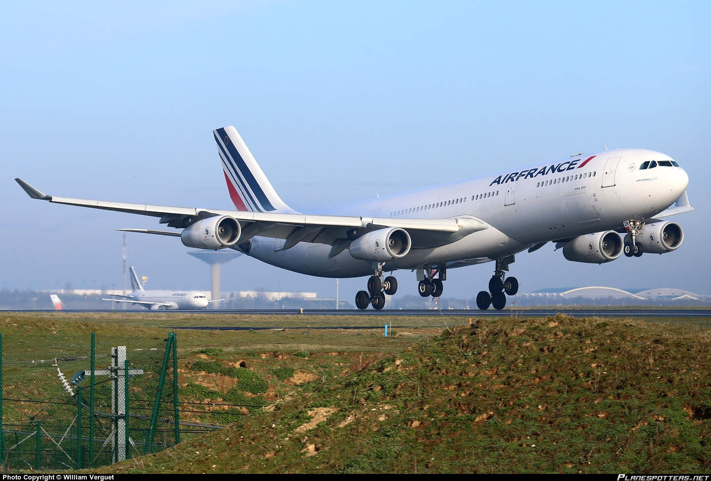 Air France flight grounded because of a mouse