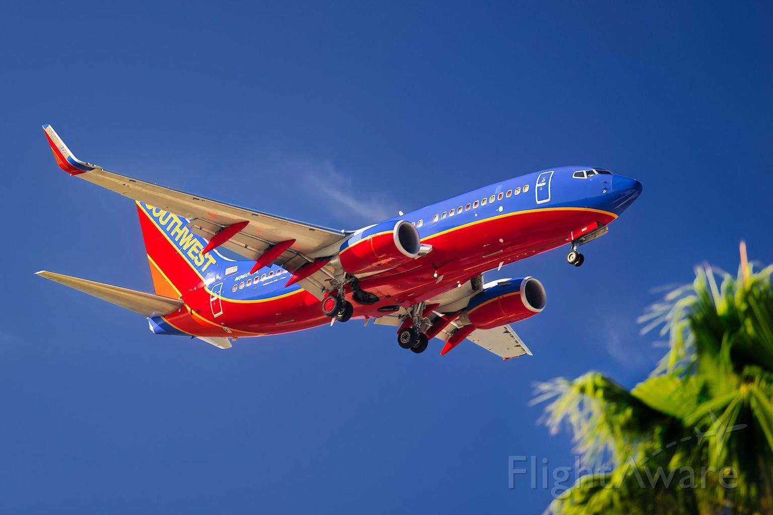 Southwest Airlines Flight Attendant distracts passengers with Looney Tunes voice